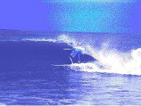 surfgk88