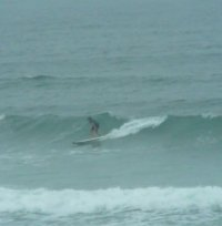 Surfhiggins13