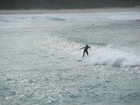 surfingheebijeebi