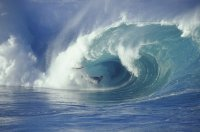 gareth_surfer
