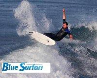 www.bluesurfari.com