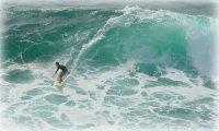 SurfSuicide4