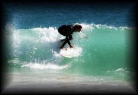 surferdude94 avatar