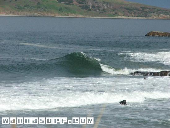 Rebounds - Surfing in Hobart, Australia - WannaSurf, surf ...