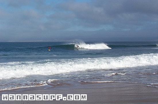 Flynns Surf Phillip Island
