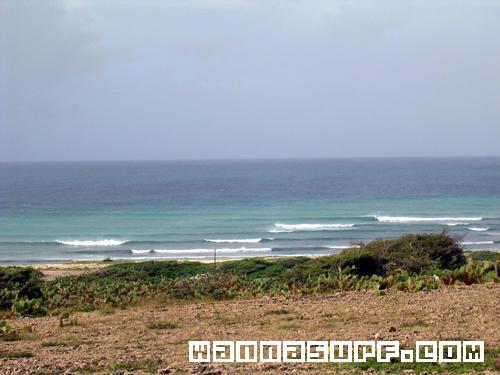 Arashi beach aruba surfing