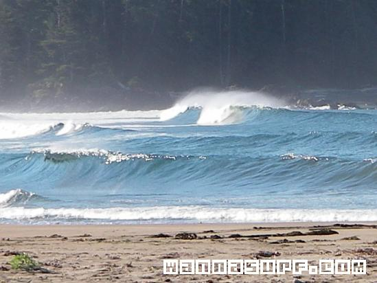 Raft cove surfing in west coast canada wannasurf surf spots atlas surfing photos maps